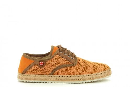 Bluish-orange-0000